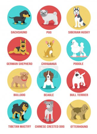 Vector dogs icon set