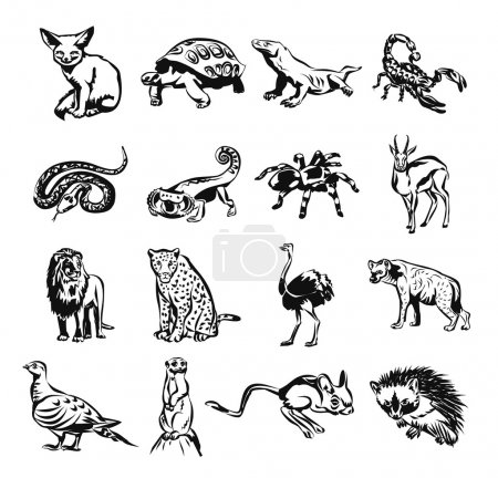 Illustration for Desert animals vector black doodle outline pictogram icon set - Royalty Free Image