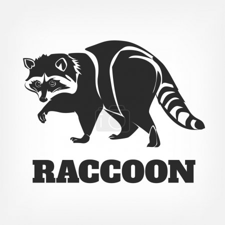 Vector raccoon black illustration
