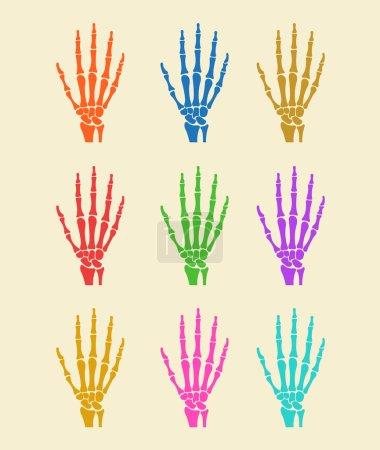 Hand bones. Vector flat icon illustration colorful set