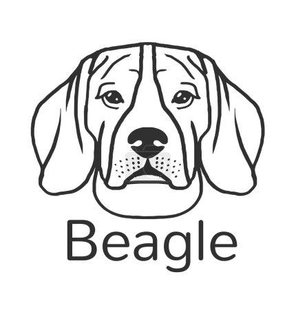 Beagle dog. Vector black icon illustration