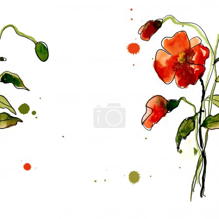 Postcard painted red poppies