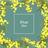 Floral retro vintage background vector illustration mimosa