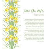 Květinové Narcis pozadí