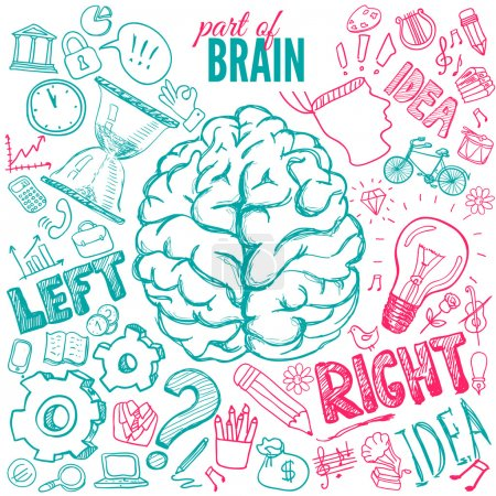 Illustration pour Fonctions cérébrales gauche et droite. Illustration vectorielle - image libre de droit