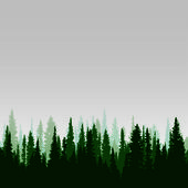 Vector panorama of wild coniferous forest with pines