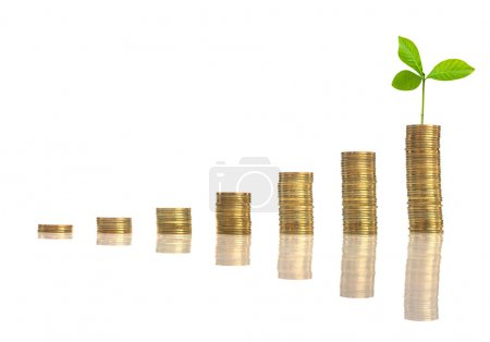 stacks of golden coins with seed on white background