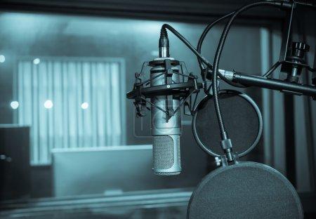Professional condenser studio microphone