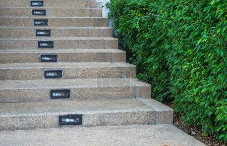 Stairways with the garden