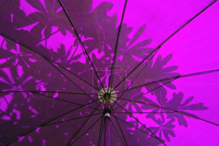 Under a purple Oriental Umbrella with abstract leaf