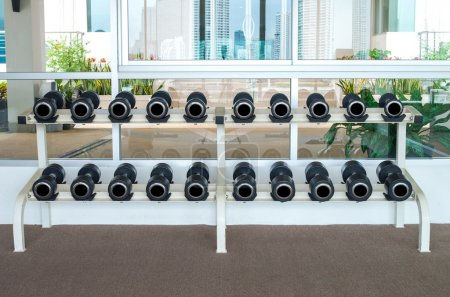 Rows of dumbbells in the fitness room