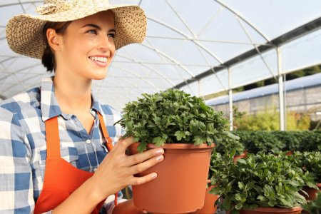 smiling woman working in greenhouse, with a potted plant in hand