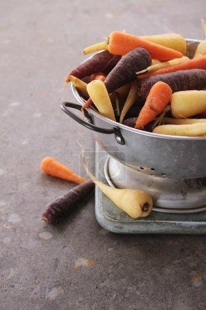 Photo pour Patrimoine carottes chantenay gros plan - image libre de droit