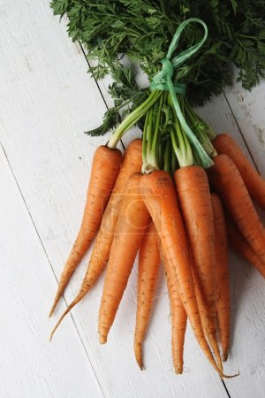 Photo for Fresh harvested carrots closeup - Royalty Free Image