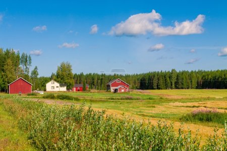 red houses in a rural landscape