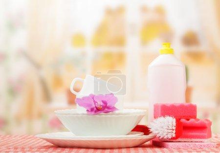 Hygiene kitchen cleanser