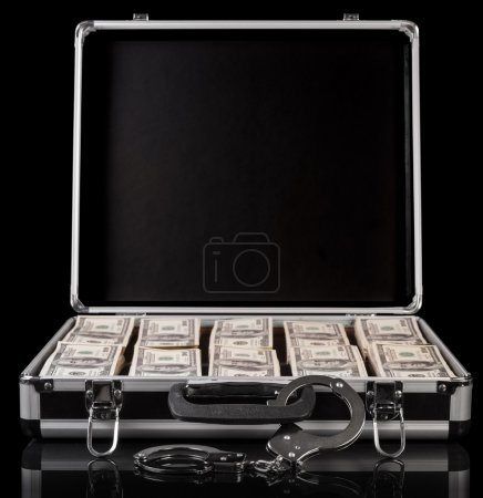 Silver case with money
