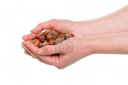 almond nuts in hands