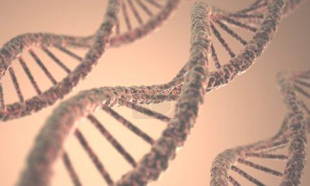 Photo pour Longue structure de l'ADN double hélice en profondeur de vue . - image libre de droit