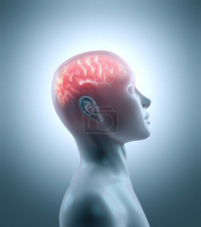 Hot brain in a cold body