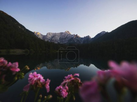 Photo for Alpine mountain lake landscape panorama at Laghi di Fusine superiore inferiore Weissenfelser See in Tarvisio Udine Dolomites Mangart Julian alps Italy Europe - Royalty Free Image