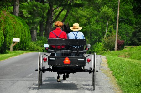 Lancaster County, PA: Two Amish Ben Riding in Buggy
