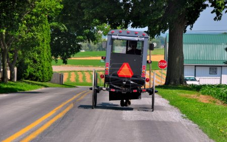 Lancaster County, PA:  Amish Buggy