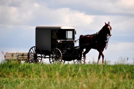 Lancaster County, PA: Amish Horse and Buggy