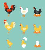 Colorful farm birds collection