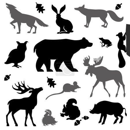 Tiere, die im europäischen Wald leben.