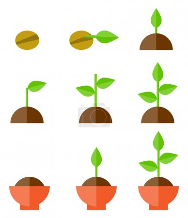 Illustration for Sequence of seed germination on soil, evolution concept - Royalty Free Image
