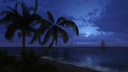 Palm trees and sailboat silhouettes on the night sky background