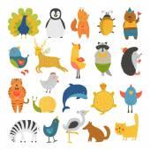 Roztomilá zvířata kolekce, baby zvířata, zvířata vektor