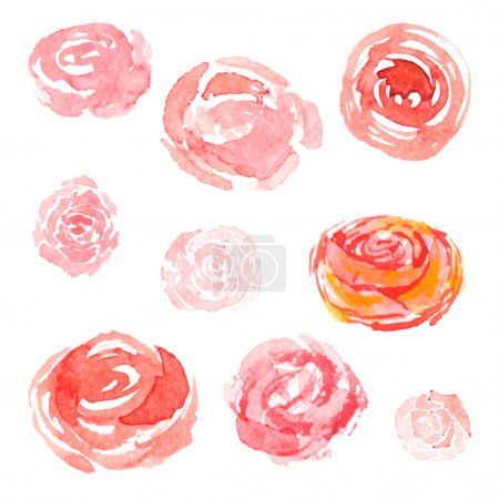 Watercolor flowers, vector floral collection