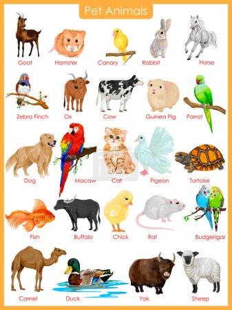 Photo pour Illustration vectorielle facile à éditer du graphique des animaux de compagnie - image libre de droit