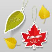 Autumn sale leaves tags elements Vector illustration easy editable