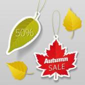 Autumn sale leaves tags elements Vector illustration easy editable