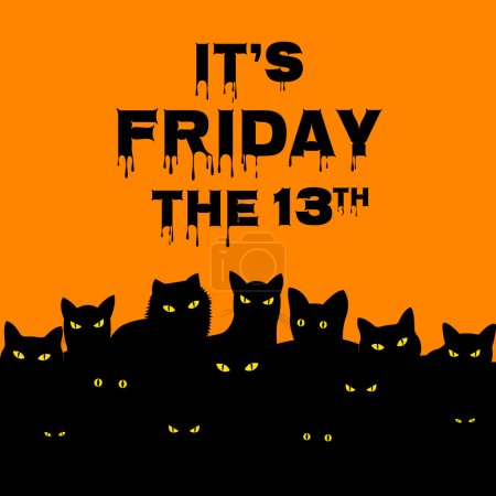 Friday 13 with black cats