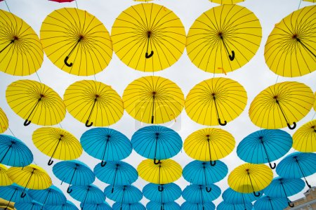 Photo for Bright colorful yellow and blue umbrellas against white background - Royalty Free Image