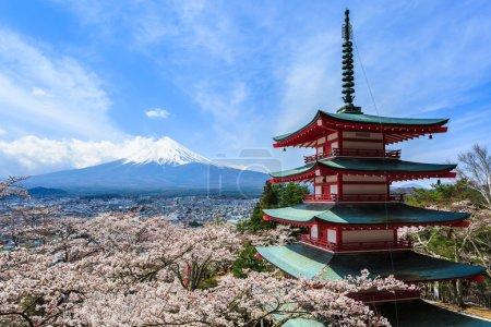 Mt Fuji, Chureito Pagoda or Red Pagoda with sakura.