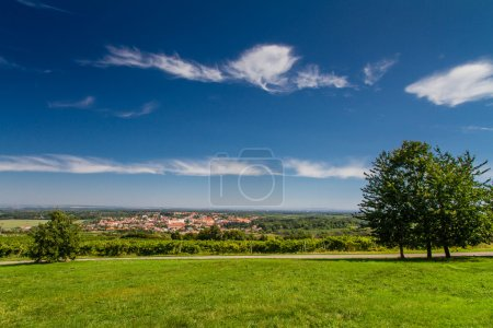 View of meadow and Valtice city from Reistna collonade