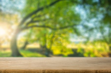table with natural background