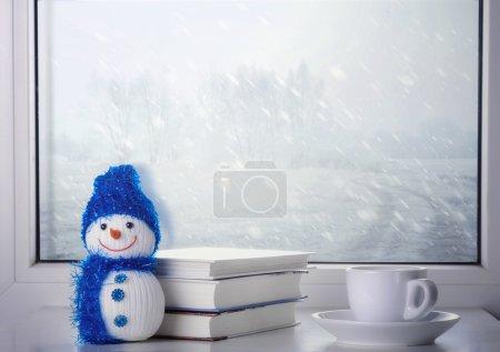 Photo pour Nature morte d'hiver près de la fenêtre - image libre de droit