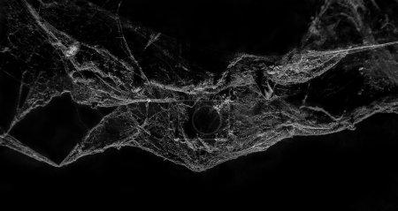 Abstract Cobweb on black background