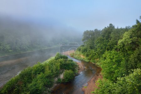 Fog in Gauja river valley