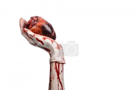 Operation and medicine theme: Bloody hand surgeon holding a human heart in a bloody white gloves isolated on a white background in studio