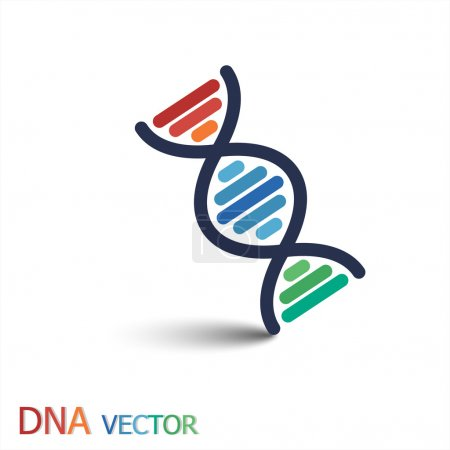 Illustration for DNA ( Deoxyribonucleic acid ) symbol  ( Double strand DNA ) - Royalty Free Image