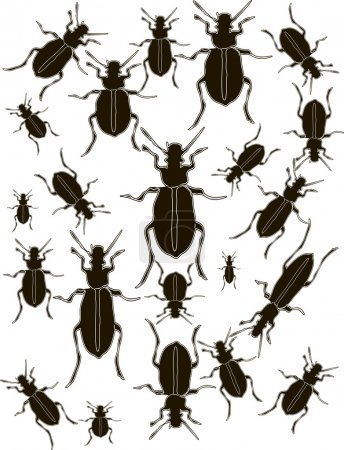 Set Bugs Silhouette Vector
