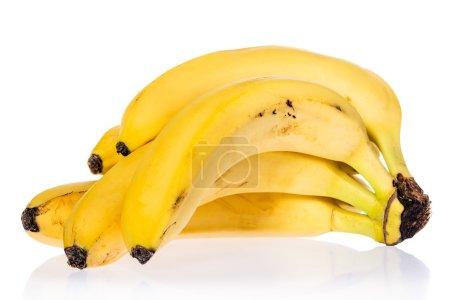 bundle of banana