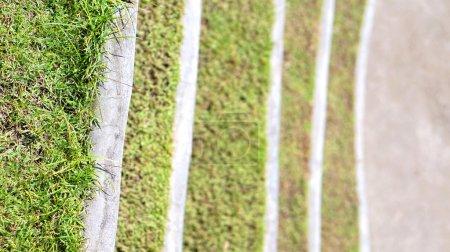 Photo pour Herbe étapes aménagement paysager dans le parc - image libre de droit